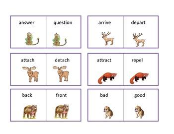 Animal Antonyms - a Flashcard Set