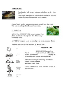 Animal Assessment and Study Guide