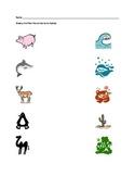 Animal Assessments: habitat and classification