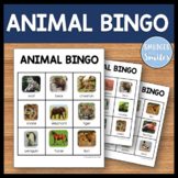 Animal BINGO - Engaging Phonics Game