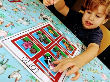 Animal BUNDLE. Vocabulary Activities (Spanish)