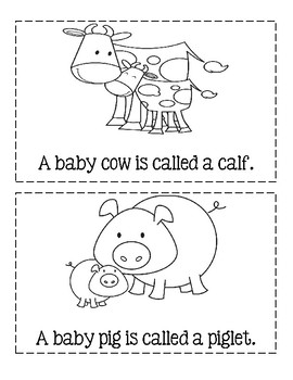 Animal Babies - Informational Text Easy Reader