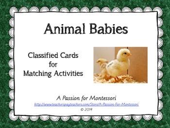 Animal Babies, 9 animals and their babies three part cards, Montessori Language