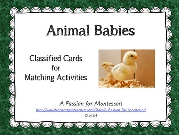 Animal Babies, 9 animals and their babies three part cards, Montessori Language