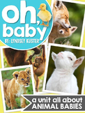 Animal Babies {A Complete Nonfiction Resource}