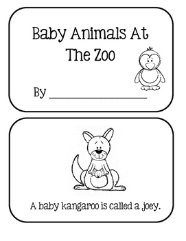 Animal Babies At The Zoo