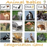 Animal Babies Categorization Game with Real Pictures