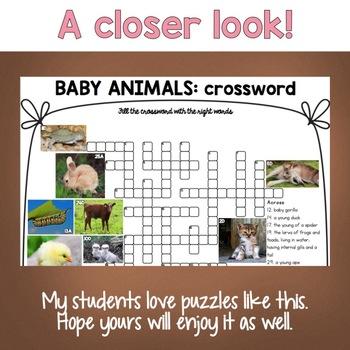 Baby Animals Crossword Puzzle