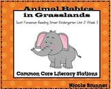 Animal Babies Reading Street Unit 2 Week 3 Common Core Literacy Stations