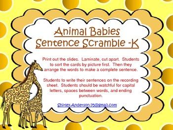 Animal Babies- Sentence Scramble