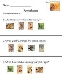 Animal Babies Test--Kindergarten Reading Street Unit 2 Week 3