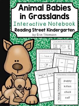 Animal Babies in Grasslands Interactive Notebook ~ Reading Street Kindergarten