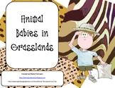 Animal Babies in Grasslands Teacher's Resource/Hand out/Ac