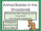 Animal Babies in the Grasslands, PowerPoint With Student Engagement