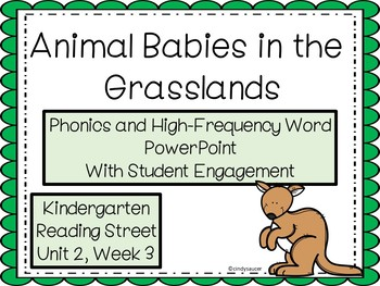 Animal Babies in the Grasslands, PowerPoint, Kindergarten