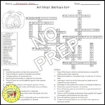 Animal Behavior Biology Science Crossword Coloring Worksheet Middle School