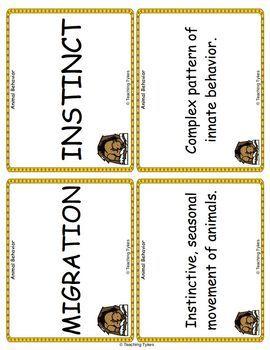 Animal Behavior Vocabulary Cards
