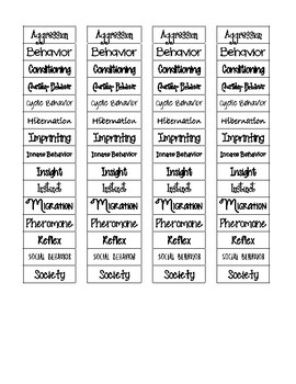 Animal Behavior Cut-n-Paste Vocabulary