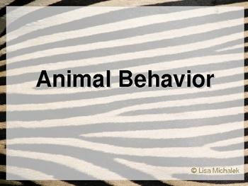 Animal Behavior PowerPoint Presentation Lesson Plan