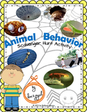 Animal Behavior Scavenger Hunt