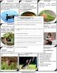 Animal Behavior Scavenger Hunt