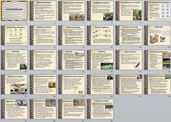 Animal Behavior Unit Bundle - 7 files
