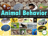 Animal Behavior - Unit Pack with Worksheets