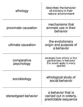 Animal Behavior Vocabulary Flash Cards for Zoology