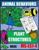 Animal Behaviors & Plant Structures