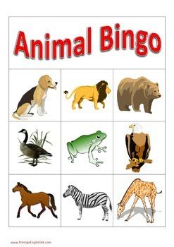 Animal Bingo Game