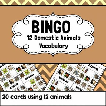 Domestic Animal Bingo - Domestic Pets Bingo