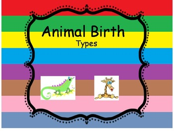 Animal Birth Types Matching Worksheet