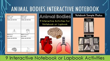 4th Grade NGSS Animal Bodies Bundle