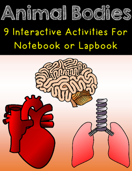 Animal Bodies Interactive Notebook or Lapbook