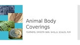 Animal Body Coverings