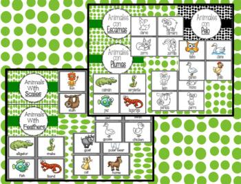 Animal Body Coverings - Cubiertas de los Animales: Dual Language Bundle