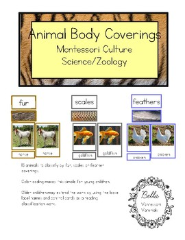 Animal Body Coverings - Montessori Culture - Science - Zoology