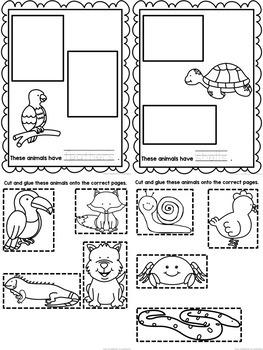 animal body coverings printable book sorting worksheets. Black Bedroom Furniture Sets. Home Design Ideas