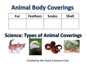 Body Coverings Of Animals moreover F D E Cc Ca Bad A B F besides Rainforest Matching Game Animals Memory besides T S Animal Group Worksheet Ver as well B B F E E D Ab D Ec. on animal coverings worksheet
