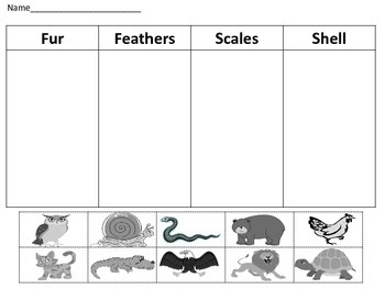 HD wallpapers animal coverings worksheets for kindergarten ...