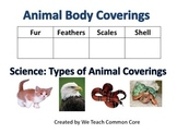Animal Body Coverings Science Center Activity Classifying,