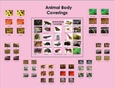 Animal Body Coverings: Three Part Cards