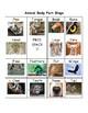 Animal Body Part Bingo