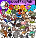 Animal Body Parts- Big set of 98 images!