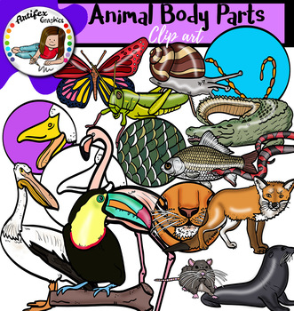 Animal Body Parts- Big set of 98 images!