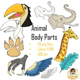 Animal Body Parts Cliparts  - 20 Images in Colour and Black and White
