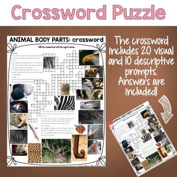 Animal Body Parts ESL/ELL Activity Crossword Puzzle
