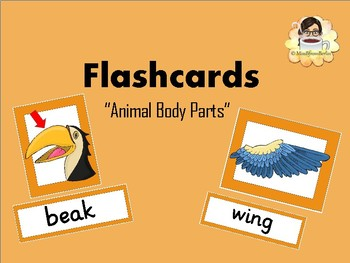 Animal Body Parts Flashcards