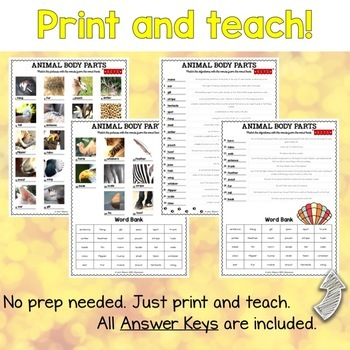 Animal Body Parts ESL Activities Picture and Definition Matching Puzzles
