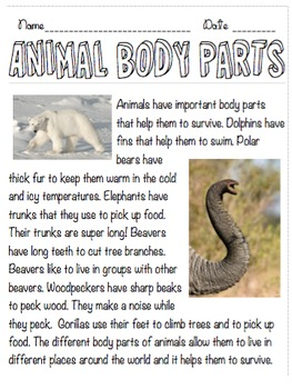 Animal Body Parts Non Fiction Reading Passage